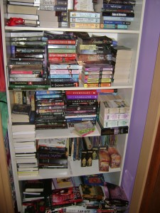 Post Thumbnail of On the Book Lover's Shelves: The Winged Lover