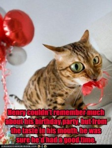funny lolcat birthday party cat kitten cicy li drunk stupid balloon cake fun