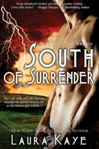 Post Thumbnail of Review: South of Surrender by Laura Kaye
